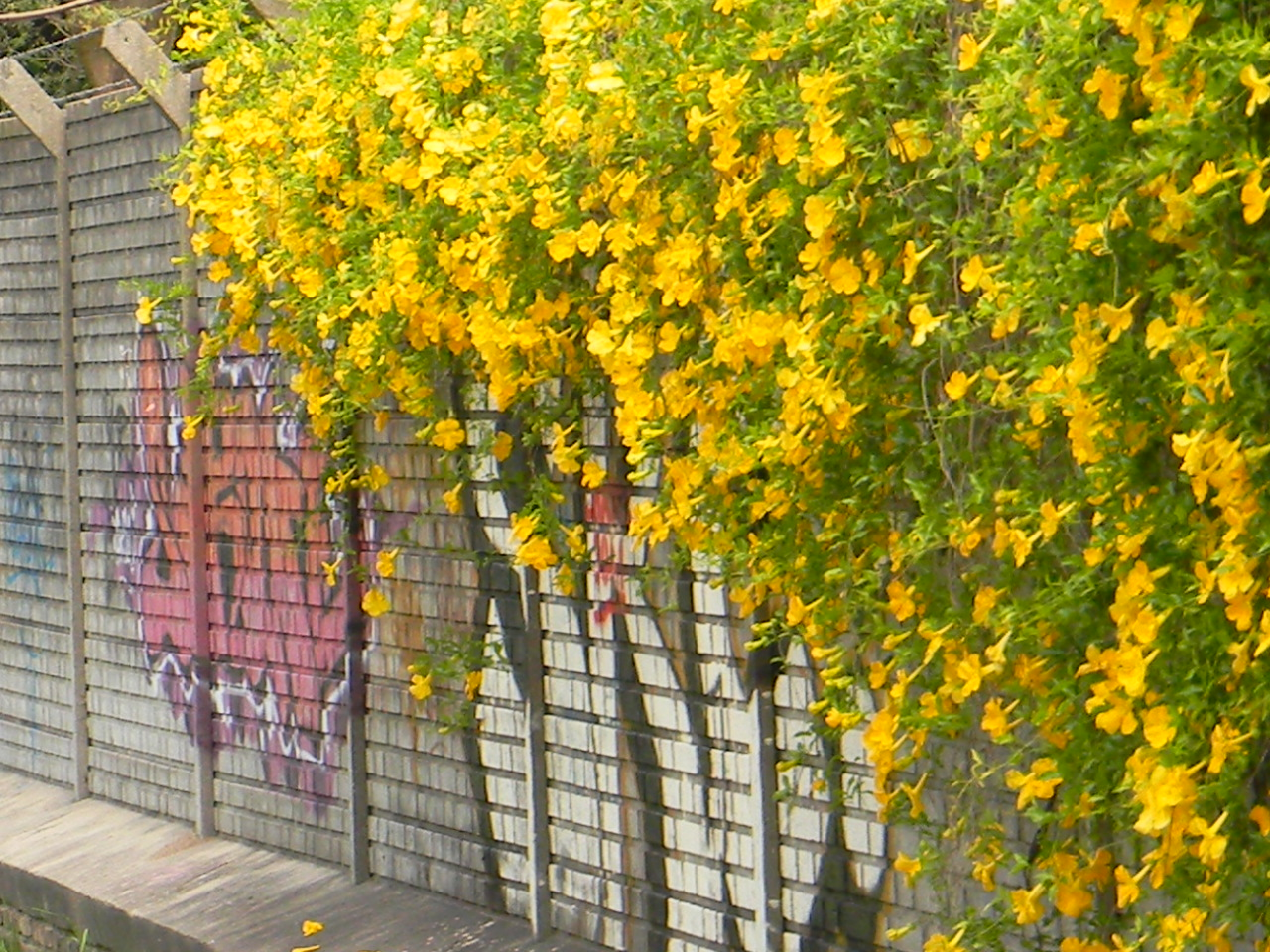 arte-urbano-002.jpg