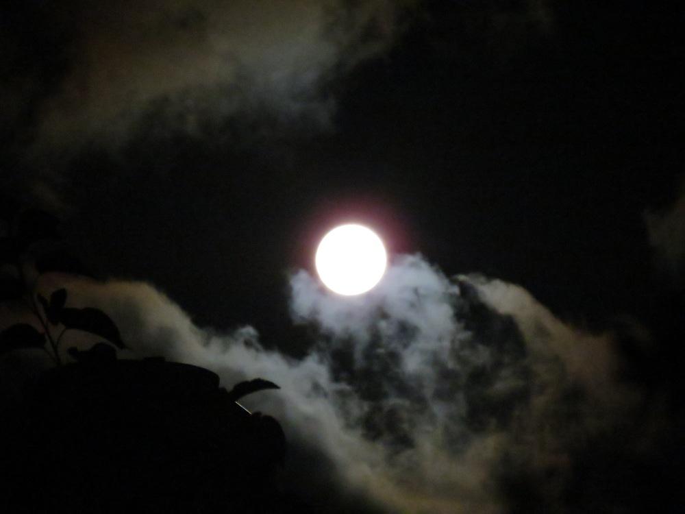 Luna llena..., en el hemisferio sur... (3/5)