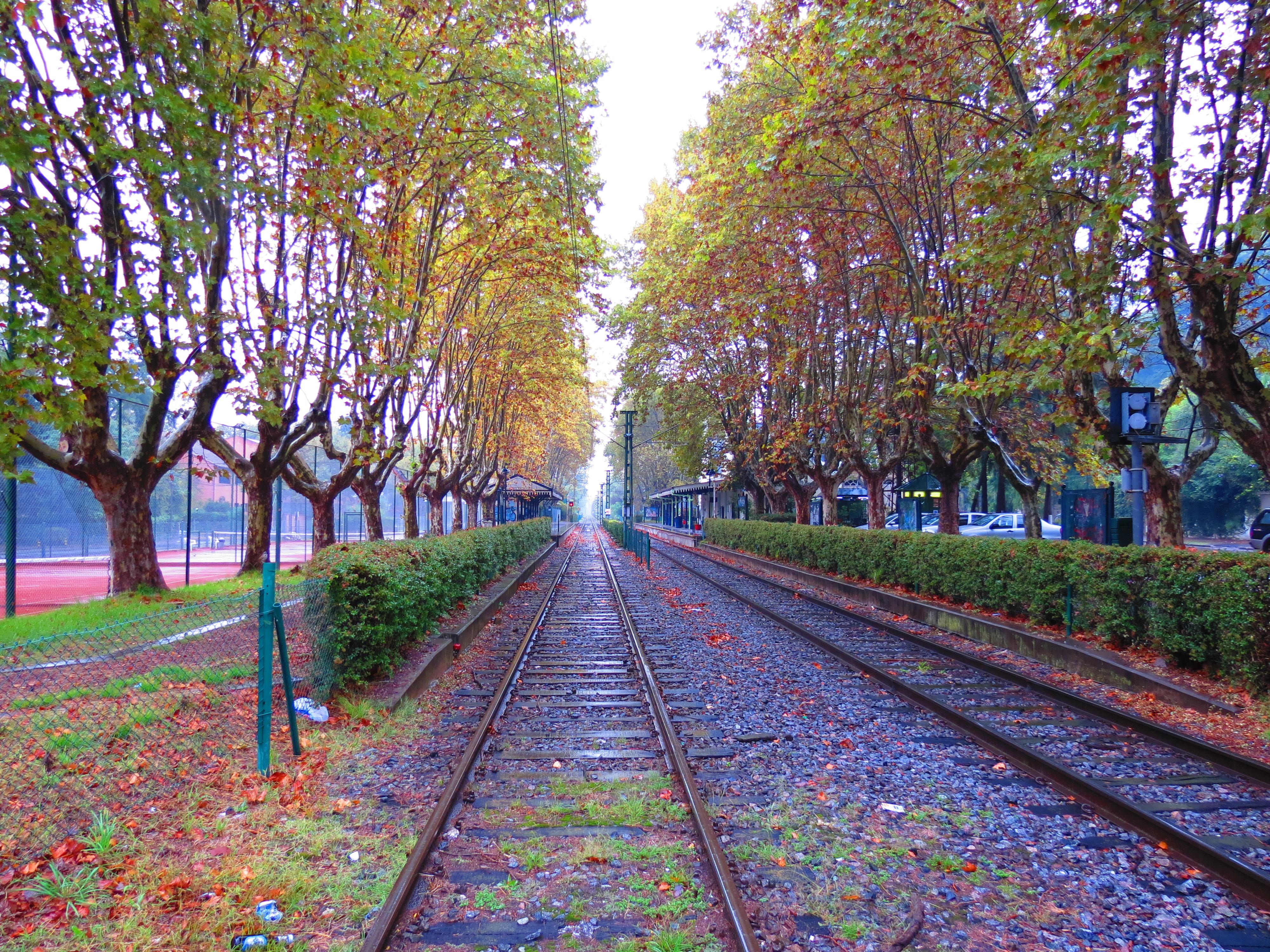 El oto o y la lluvia en una vieja estaci n del ferrocarril - Fotos bonitas de otono ...