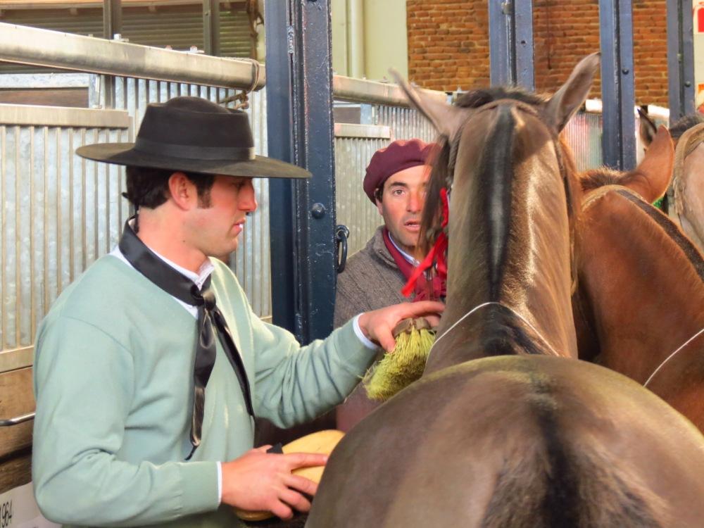 Entre gauchos, sombreros y caballos... (4/6)
