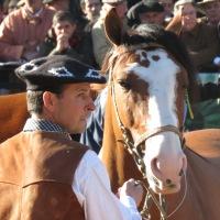 Entre gauchos, sombreros y caballos...