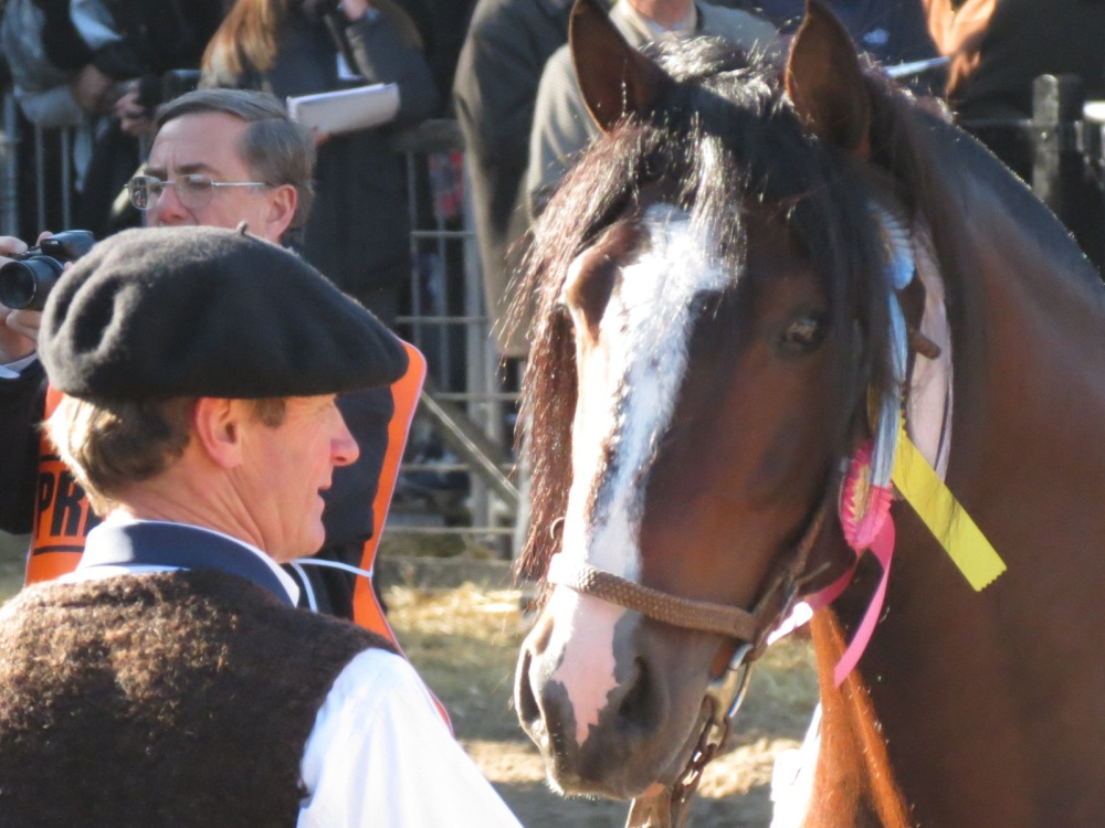 Entre gauchos, sombreros y caballos... (2/6)