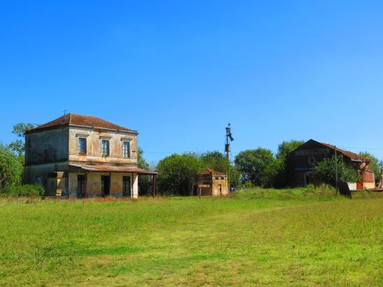 Campo Azc13 031