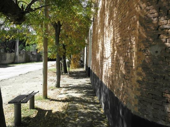 Campo Azc13 080